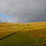 Yellowmeade Farm