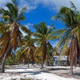 Christmas Island Roadway