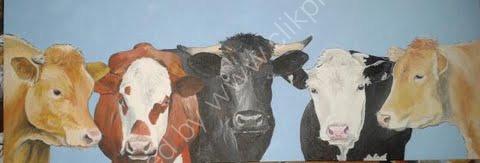 'Multi moo' Canvas