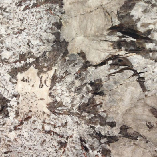 Bianco Antico granite Beltrami - 30mm - Polished finish