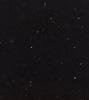 stellar negro logo
