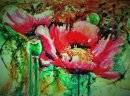 'Opium Poppy Revisited'