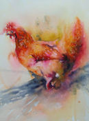 'Rooster 6'
