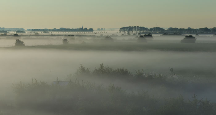 Ooypolder in de mist