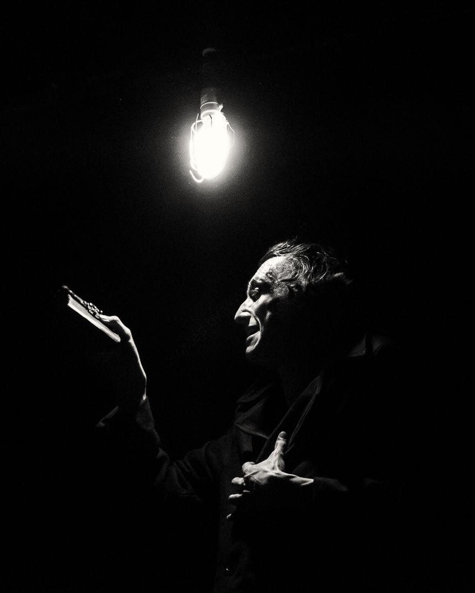 James Swanton as Dracula