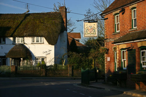 Thatched cottage and pub