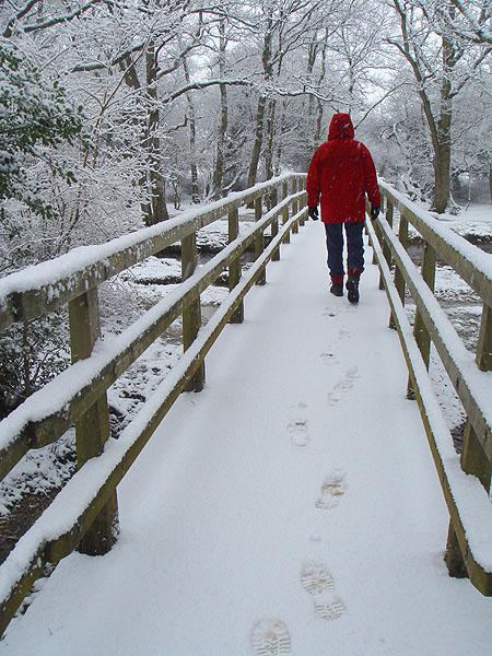 Walker on bridge