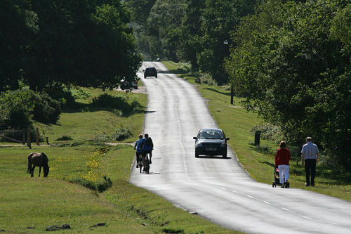Cyclists, walkers, motorists and pony