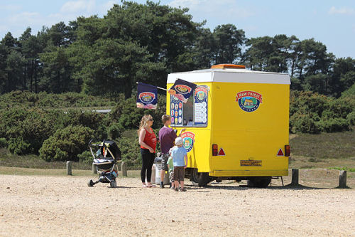 Buying New Forest ice cream