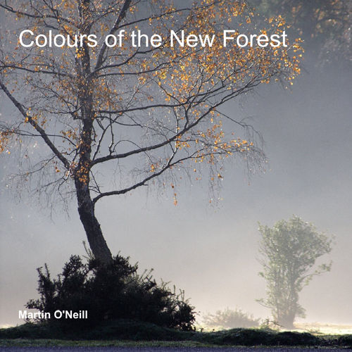 Colours of the New Forest