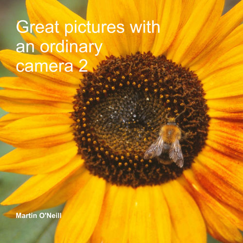 Great Pictures with an Ordinary Camera 2