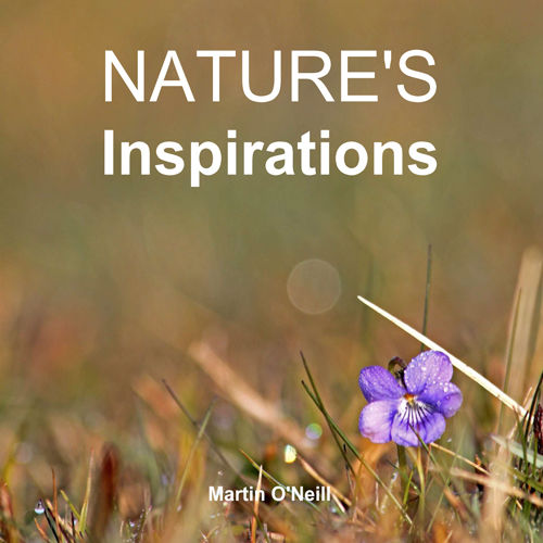 Nature's Inspirations