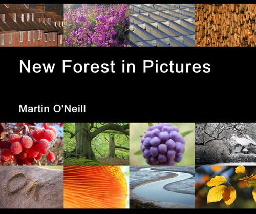 New Forest in Pictures
