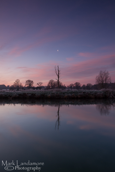 Lone Tree on a Frosty Bure Morning