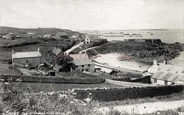 Crabby Alderney