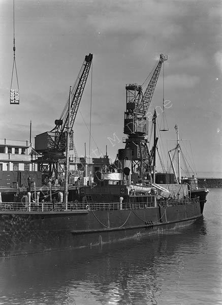 G-374w-Roebuck