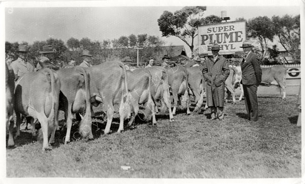 Royal Show Melbourne 1935