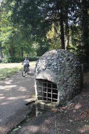 The Druids way - Robert Phillips
