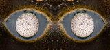 The Eyes