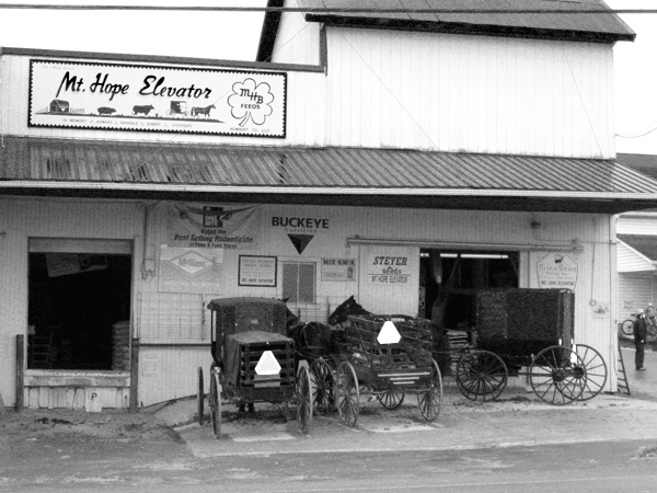 Buggies at the Mt. Hope Feed Store and Granary