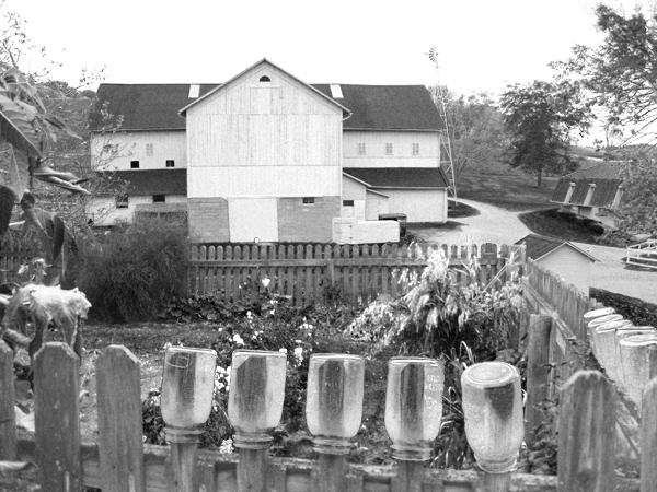Holmes County Barn and Garden