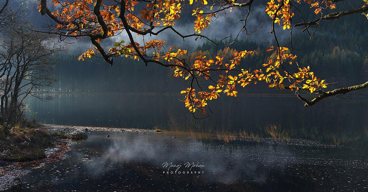 Autumn, Loch Chon Coast