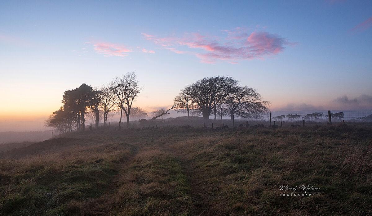Evening, Bonnyton Moor
