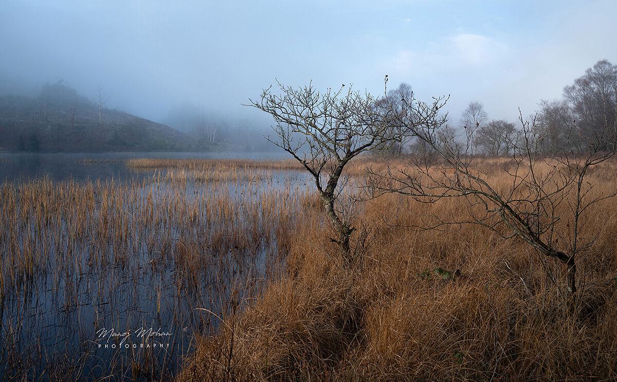 Light through mist at Loch Chon