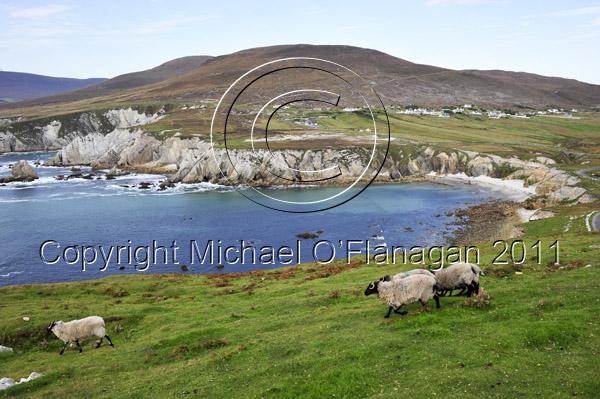 Achill Island, Co. Mayo (Cloch Mor Bay) Ref. # DSC2345