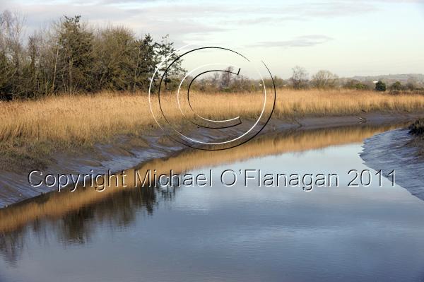 Bunratty River, Co. Clare Ref. # DSC_5549