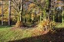 Coole Park, Co. Galway Ref. # DSC4564