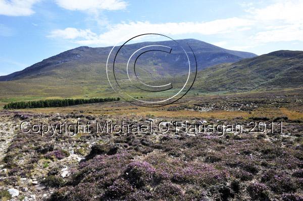 Corran Hill, Beal Feariste, Achill Sound, Co. Mayo Ref. # DSC2255
