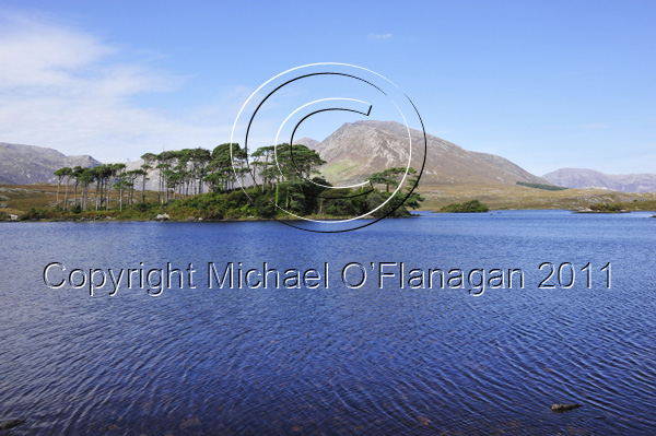 Pine Island on Derryclare Lough, Recess & Twelve Bens Mountain, Co. Galway Ref. # DSC1887