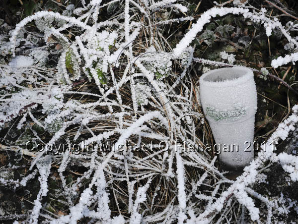 Frosted Beer Glass, Corofin, Co. Clare Ref. # DSC4895