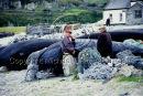 Inis Oirr, Aran Islands, Co. Galway Ref. # F107.7