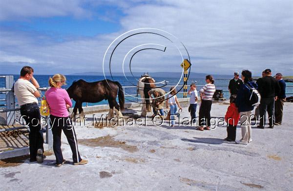 Inis Oirr, Aran Islands, Co. Galway Ref. # F680.21