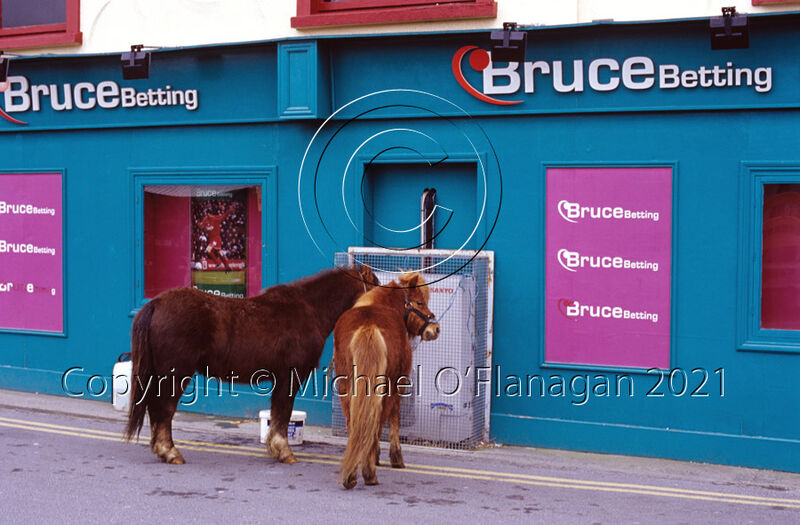 Lully Cullinan's Ponies, The Market, Ennis, Co. Clare Ref. # F712.1.jpg