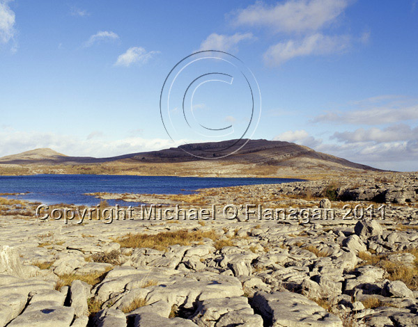 Mullaghmore, The Burren, Co. Clare Ref. # F648.9