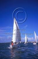 Yachting Ref. # F496.6