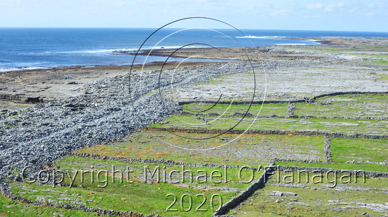 View from top of Lighthouse, Inis Oirr, Aran Islands Ref. # DSC5090CR.jpg
