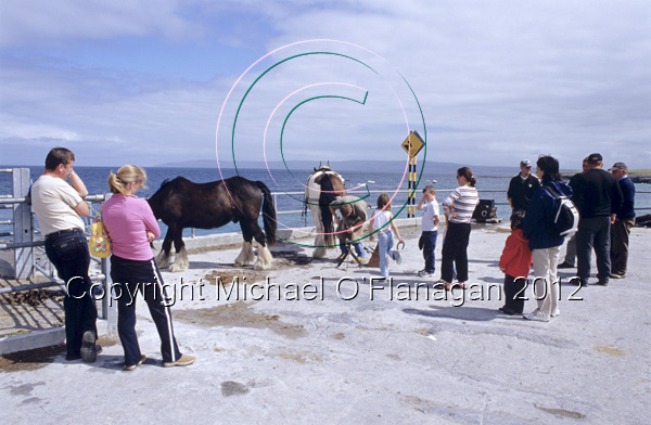 Tourists watching Farrier Cecil Fitzgerald at work, Inis Oirr Ref. # F680.21