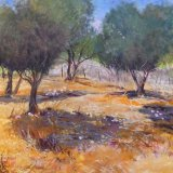 Halki Olive Grove SOLD