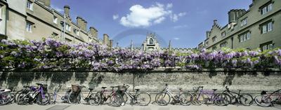 Cambridge Bicycles