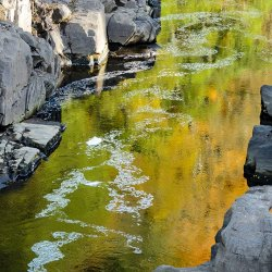Autumn Water by Alison Stace
