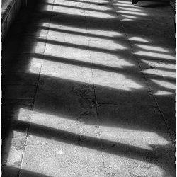 Cloister shadows by Lyn Sharples