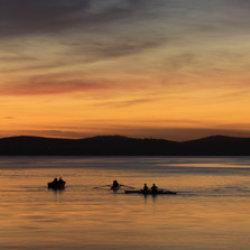 Dawn Rowers by Tony Cutting