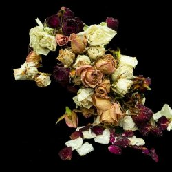 Decaying Bouquet