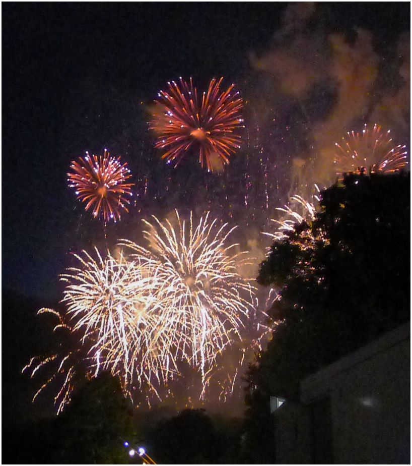 Firework display by Janet Cox