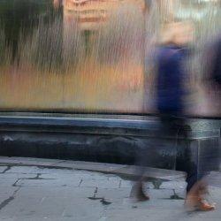Fleeting Moment by Lyn Sharples