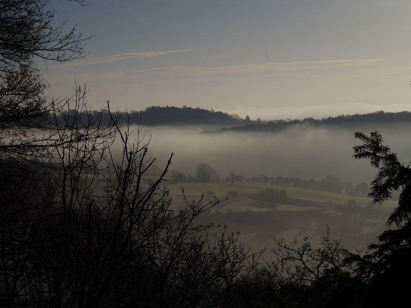 Foggy Landscape  Sharon Thomas